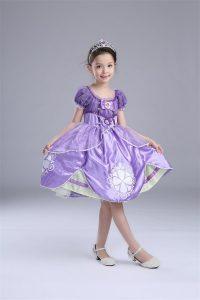 ちいさなプリンセスソフィアのドレス01